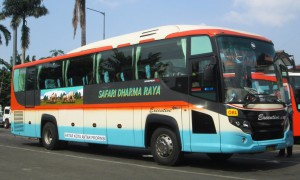 bus safari dharma raya2