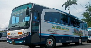 bus safari dharma raya4